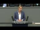 Alice Weidel AFD Immer mehr Geld für Europa Geld das Ihnen nicht gehört