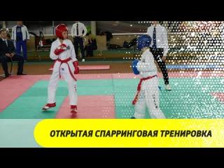 Открытая спарринговая тренировка Чемпиона Мира по тхэквондо (ИТФ) Шаманина Антона