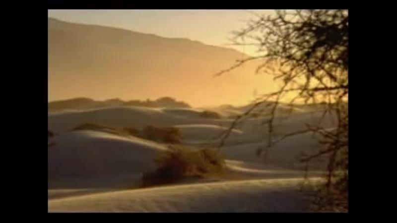 ROGER TAYLOR and YOSHIKI Foreign Sand