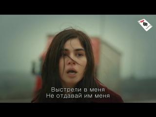 adi_zehra_1.1