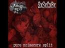 SxSxCxBx - 16 tracks (Pure noisecore split w/ ANUS MP3) [2017]
