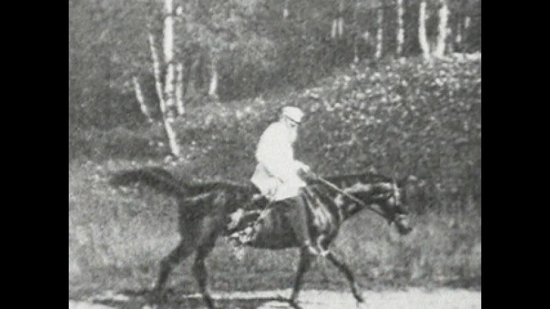 Ясная Поляна Лев Толстой