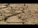Un punto de no retorno en la deforestación amazónica