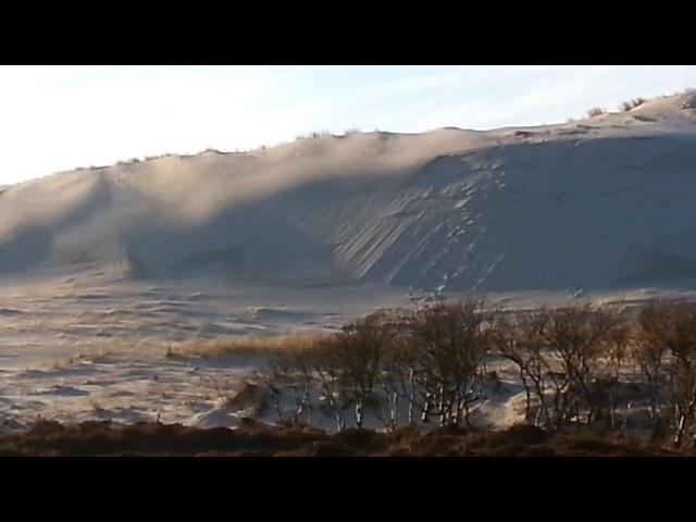 Sahara-achtige Schoonheid DuinSahara-like Beauty Bergen aan Zee Holland 06 February 6th 2018