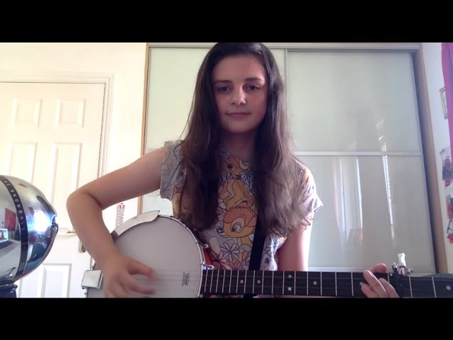 Taylor Swift Mean Banjo Cover