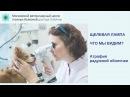 Атрофия радужной оболочки у десятилетней собаки породы ши-тцу (видео щелевой лампой)