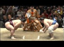 Январский турнир по Сумо 2016, 10-12 дни Хатсу Басё Токио / Hatsu Basho Tokyo
