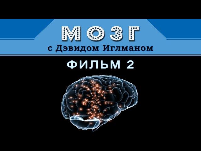Мозг с Дэвидом Иглманом Фильм 2 Что меня создаёт Док Фильм HD 720p