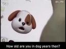 JERKY JERKY DOG