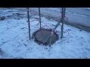 Последствия ликвидации аварии в Улан-Удэ,в Москву доложили,авария ликвидирована!