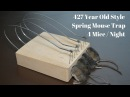 427 Year Old Style Spring Mouse Trap In Action 4 Mice in 1 Night