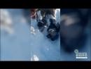 Рятувальники витягли зі снігового завалу 12 річну дівчинку