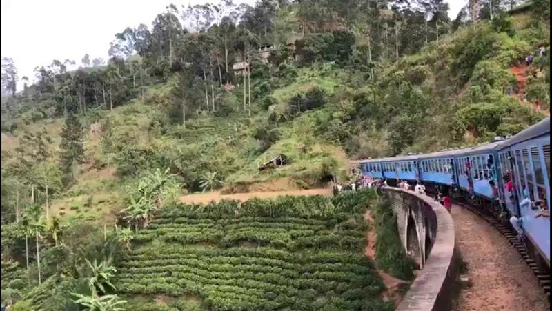 Прилетайте на Шри-Ланку посмотреть нашу красивую дикую природу. Если вас заинтересовал тур, пишите или звоните мне. 94726539424