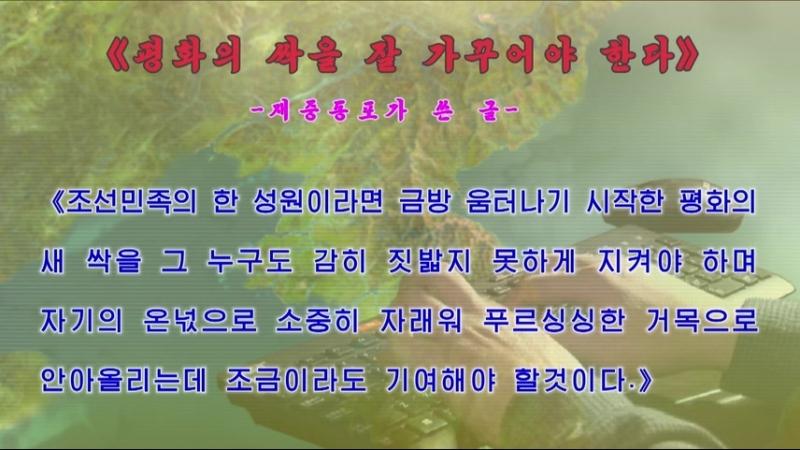 《평화의 싹을 잘 가꾸어야 한다》 -재중동포가 쓴 글- 외 1건