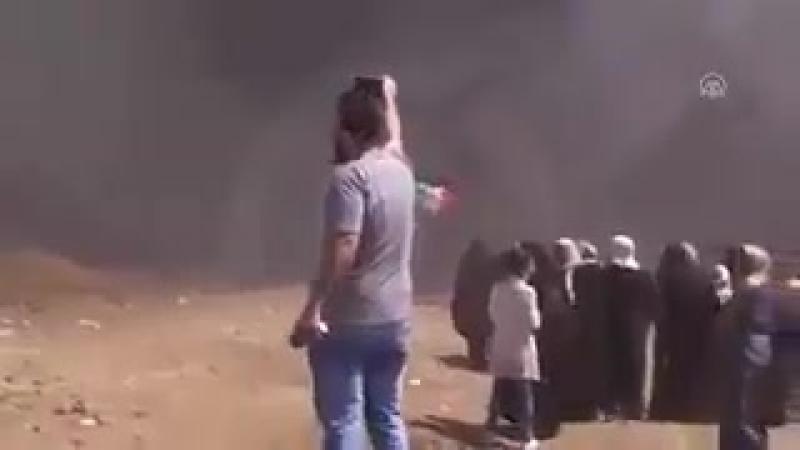 Crime of isreal in gaza