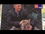 Календари с фотографиями Владимира Путина стали бестселлером в Японии.