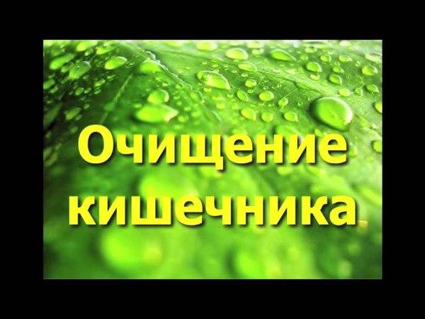 Очищение организма - очищение кишечника от полипов чистотелом.