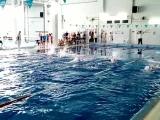 Победный заплыв- комплексное плавание 100 м Первенство Нижегородской области среди девушек 2008 года