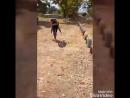 XiaoYing_Video_1506878929814.mp4.mp4