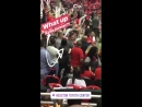 18 апреля 2018: баскетбольный матч команд «Houston Rockets» и «Minnesota Timberwolves»