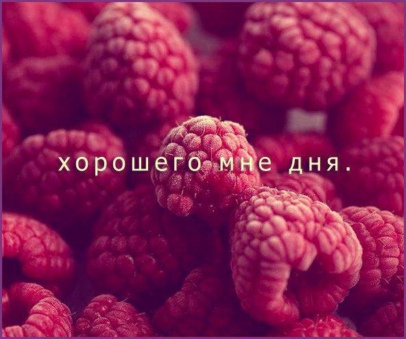 Елена Герасимова | Минск