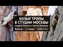 Вебинар Козьи тропы в студии Москвы