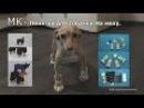 МК-Пинетки Вязаные Крючком для собачки.на меху.Схема.Описание