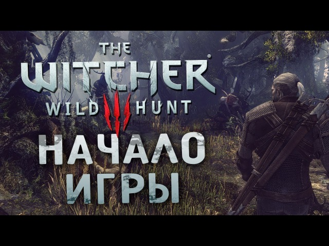 Все только начинается Ведьмак 3 Дикая охота on PS4