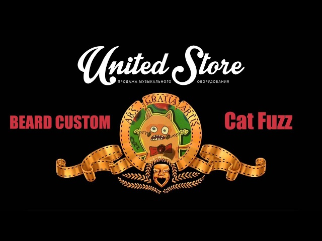 5 minutes with Beard Custom Cat Fuzz by United-Store