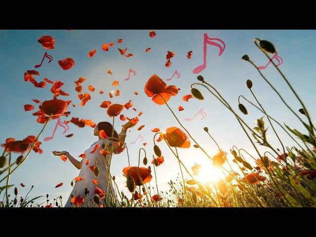 Beautiful Piano Music: Relaxing Music, Romantic Music, Sleep Music, Study Music ★132