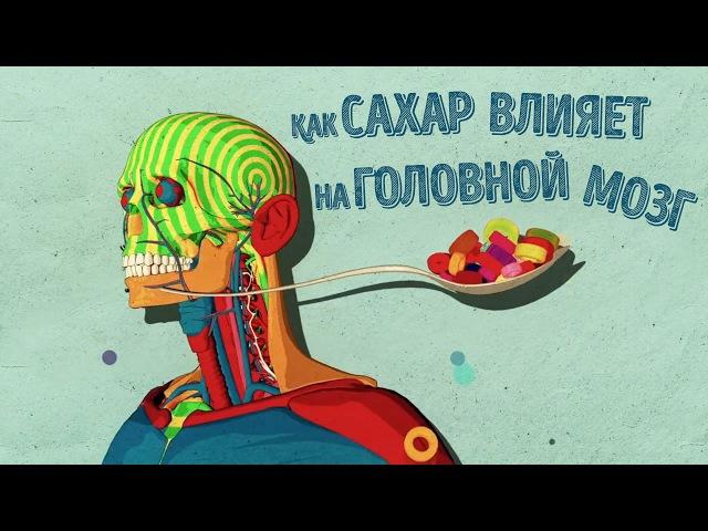 Как сахар влияет на головной могз Николь Авина TED ED Русская озвучка и перевод