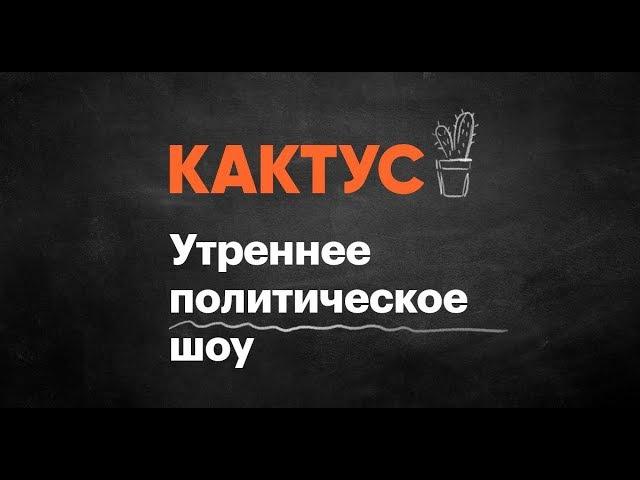 Кактус 215. Гость — Дарья Зарыковская