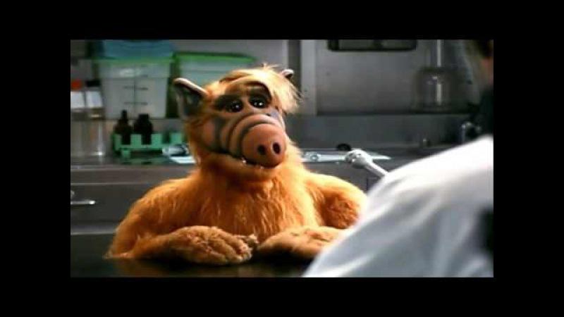 Самые СМЕШНЫЕ УГАРНЫЕ моменты в фильме Проект Альф/Project Alf.