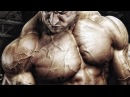 Guy Cisternino - STAY FOCUSED and WORK HARD - Bodybuilding Motivation