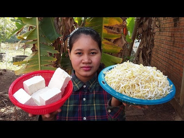 Awesome Cooking Fry Pork With Tofu Beansprouts Recipes - Fried Tofu Recipes - Village Food Factory