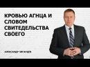 Кровью Агнца и словом своего свидетельства Александр Чиганцев