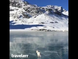 Юный полярный исследователь
