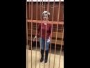Директор ТЦ Кемерово в суде возложила подозрения на кавказских подростков