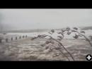 Hurricane Ophelia RIPS Through Ireland Footage PART 4