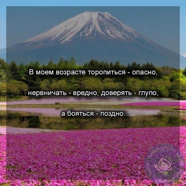 Фото 289851798
