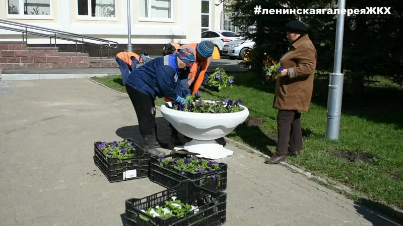 В Ленинском районе Уфы продолжают высаживать цветы на клумбы