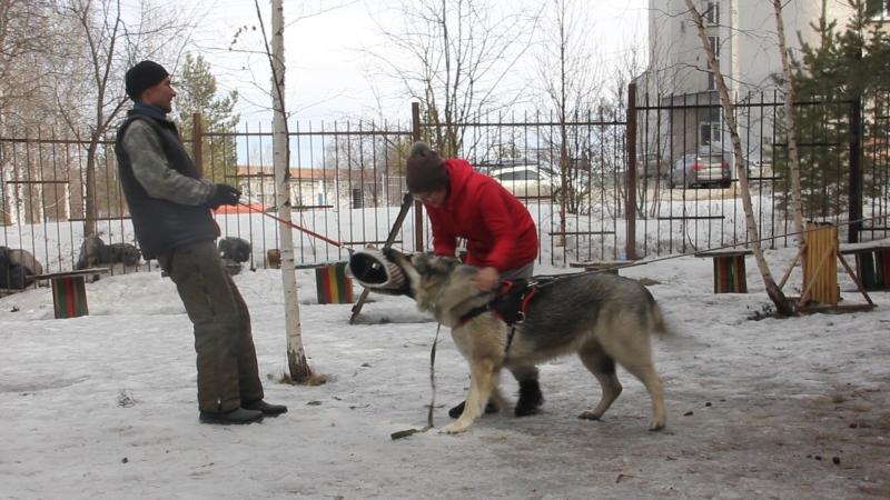 Тренинг по защите в Первоуральске.ВЕО. Ювелир...8234