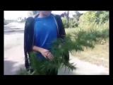 ЛУЧШИЕ ПРИКОЛЫ ЗА 2017 ГОД! Выпуск 2 Подборка самых смешных видео 2017 года