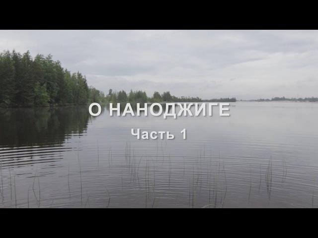 О НАНОДЖИГЕ часть 1