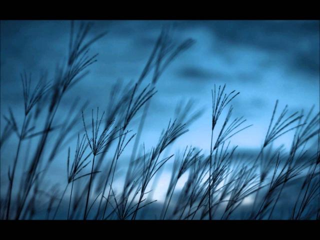 ILS - Dark Skies