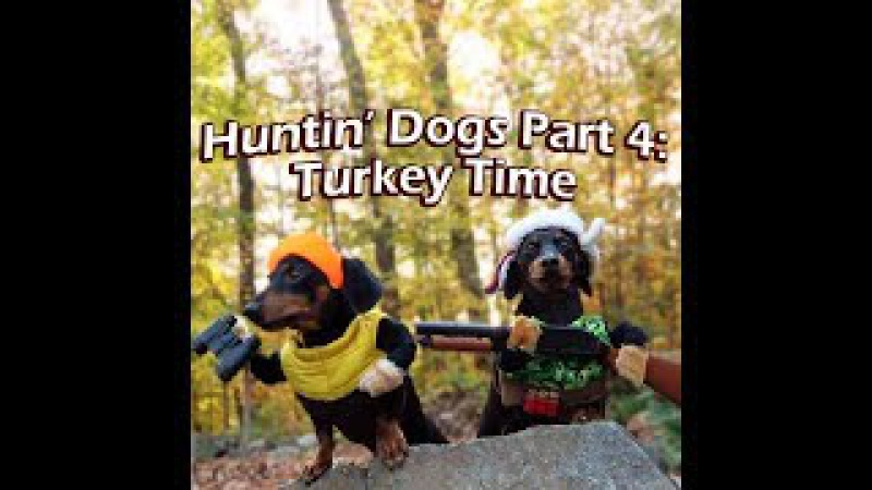 Crusoe Oakley the Huntin' Dogs: Turkey Time