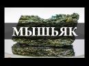 Мышьяк / Arsenicum. Химия –просто vsimzr / arsenicum. [bvbz –ghjcnj