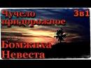 Истории на ночь (3в1): 1.Чучело придорожное, 2.Бомжиха, 3.Невеста