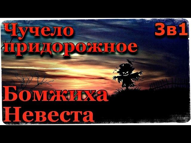 Истории на ночь (3в1) 1.Чучело придорожное, 2.Бомжиха, 3.Невеста