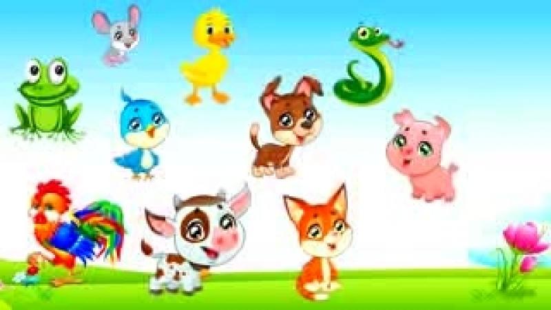 Страна Детства Как говорят животные